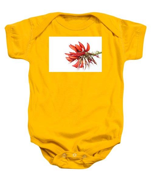 Baby Onesie featuring the photograph Orange Clover IIi by Stephen Mitchell