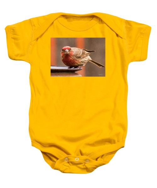 Painted Male Finch Baby Onesie