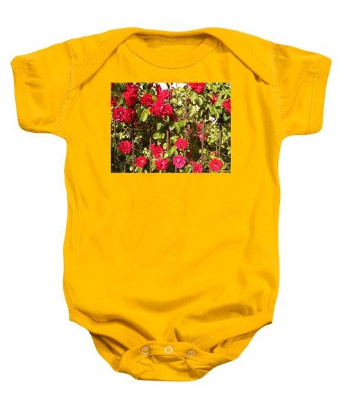 Red Roses In Summertime Baby Onesie