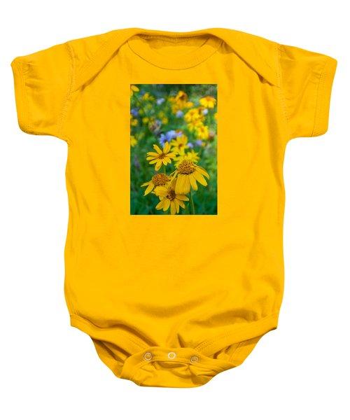 Rocky Mountain Wildflowers Baby Onesie