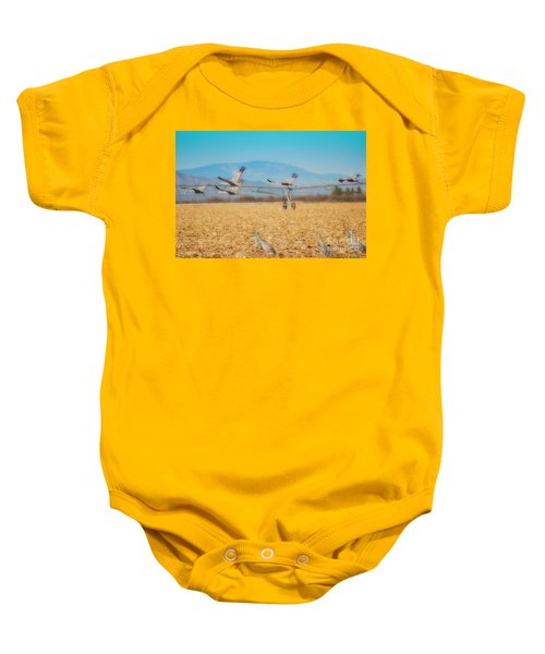 Sandhill Cranes In Flight Baby Onesie