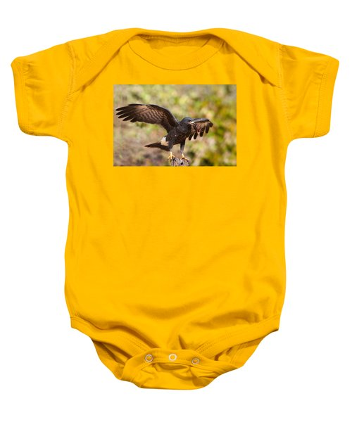 Snail Kite With Crab In Pantanal Baby Onesie