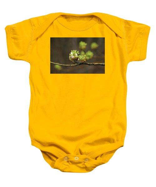Spring Buds 9365 H_2 Baby Onesie