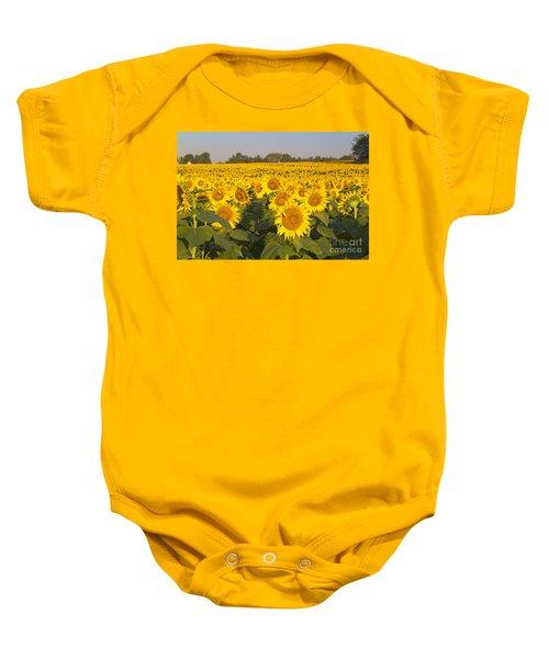 Sunshine Flower Field Baby Onesie
