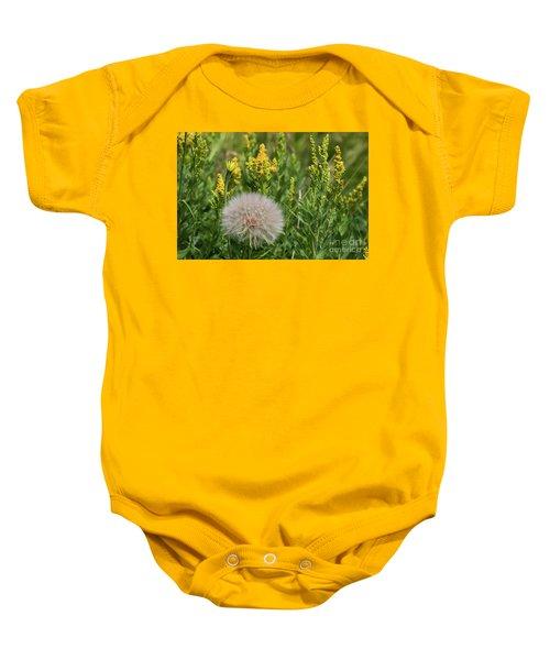 The Dandelion  Baby Onesie
