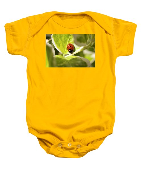 The Ladybug  Baby Onesie
