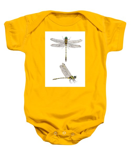 Top And Side Views Of A Male Georgia River Cruiser Baby Onesie
