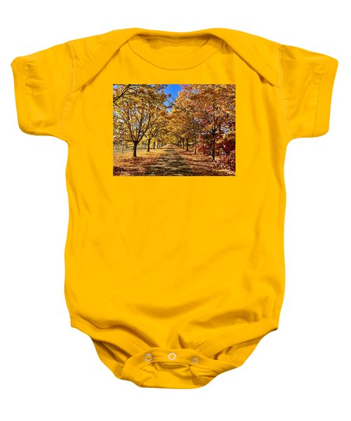 Autumn Road Baby Onesie