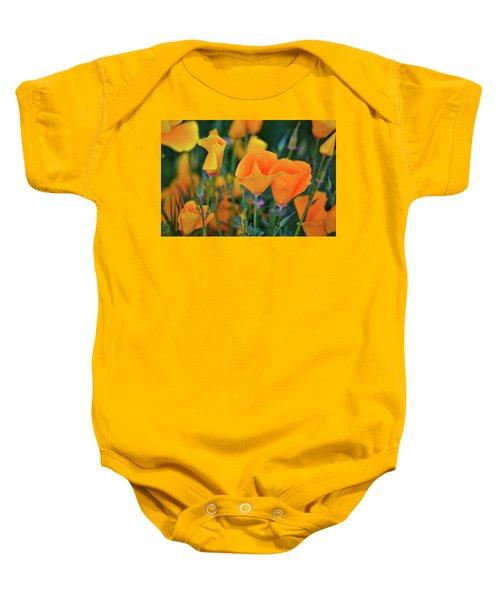 California Poppies Lake Elsinore Baby Onesie