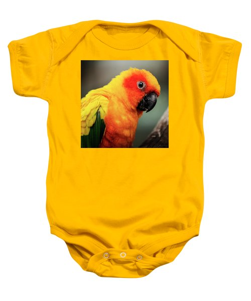 Close Up Of A Sun Conure Parrot. Baby Onesie