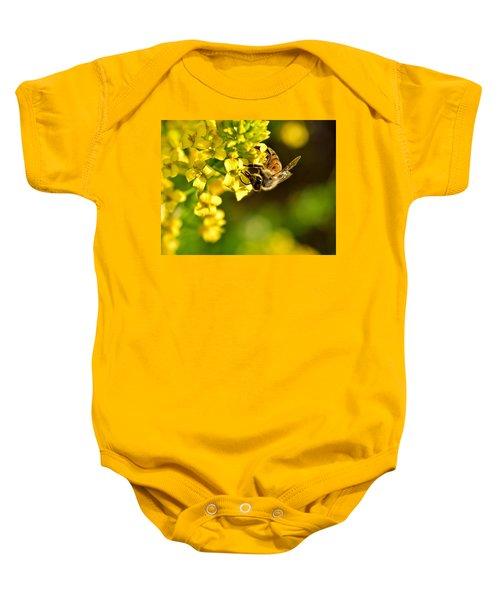 Gathering Pollen Baby Onesie