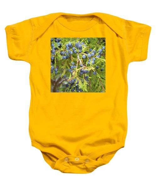 Juniper Berries Baby Onesie