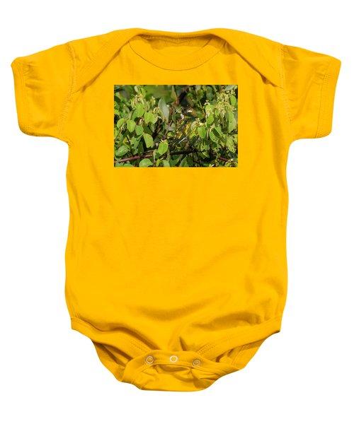 Klaas's Cuckoo Baby Onesie