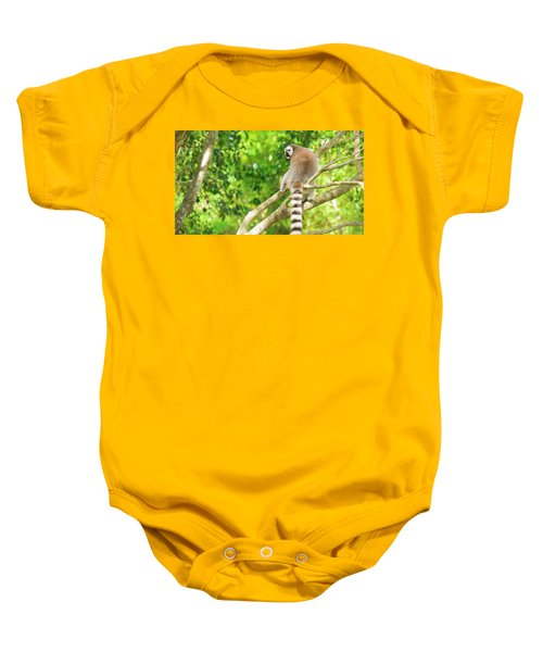 Lemur By Itself In A Tree During The Day. Baby Onesie