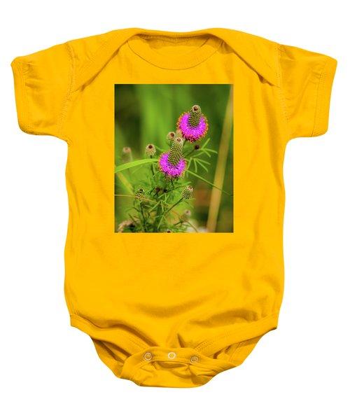 Prairie Clover Baby Onesie
