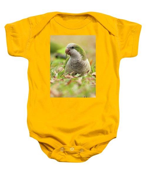 Quaker Parrot #3 Baby Onesie