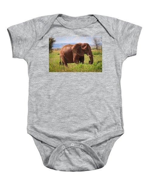 African Desert Elephant Baby Onesie