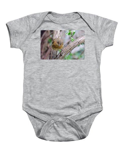 Baby Robin Baby Onesie