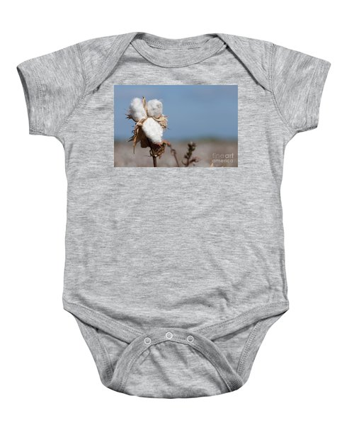 Cotton Bolls  Baby Onesie