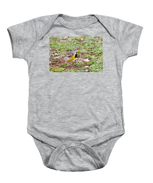 Eastern Meadowlark Sturnella Magna Baby Onesie