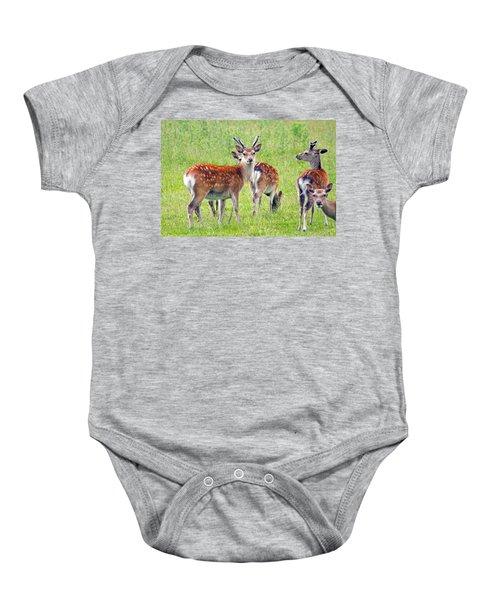 Fallow Deer Baby Onesie