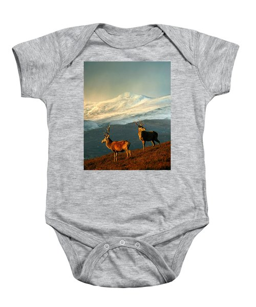 Red Deer Stags Baby Onesie