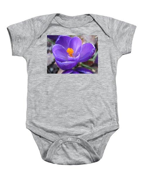 Springjoy Baby Onesie