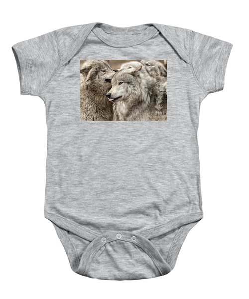 Adult Timber Wolf Baby Onesie