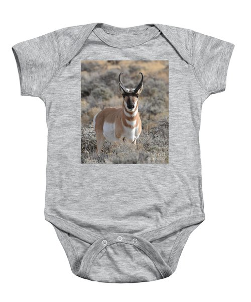 ...and The Antelope Play Baby Onesie