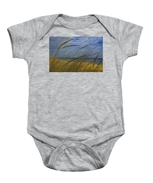 Beach Grass On A Sand Dune At Glen Arbor Michigan Baby Onesie