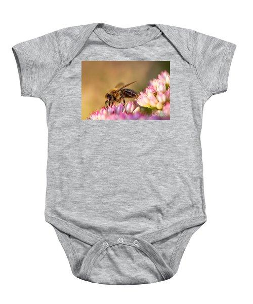 Bee Sitting On Flower Baby Onesie