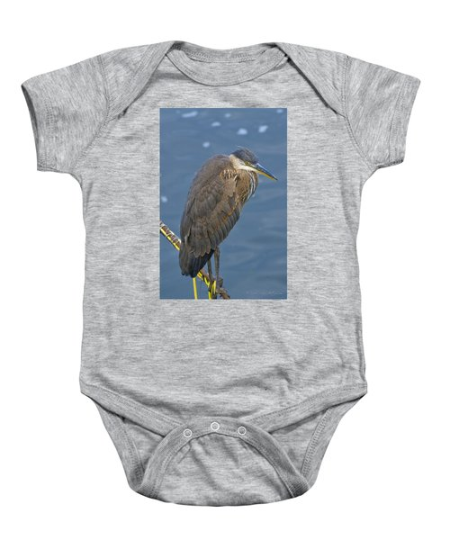 Baby Onesie featuring the photograph Blue Herron by Jim Thompson
