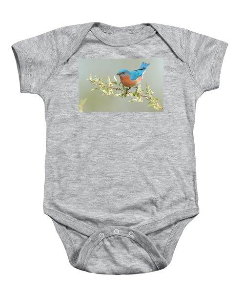 Bluebird Floral Baby Onesie