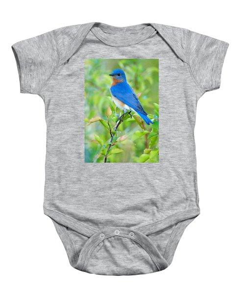 Bluebird Joy Baby Onesie