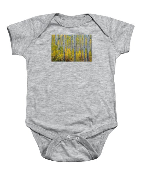 Brilliant Colors Of The Autumn Aspen Forest Baby Onesie