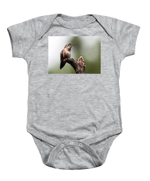Broad-tailed Hummingbird Sit  Baby Onesie