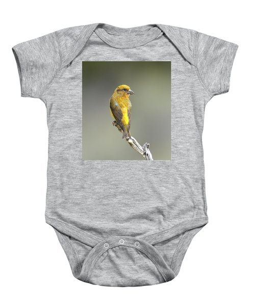 Common Crossbill Loxia Curvirostra Baby Onesie