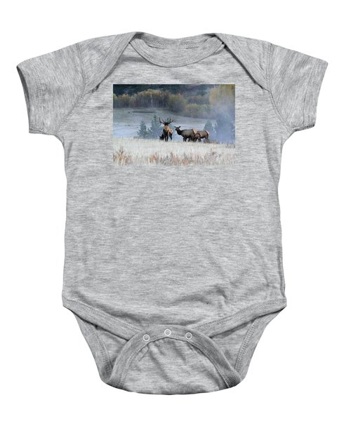 Cool Misty Morning Baby Onesie