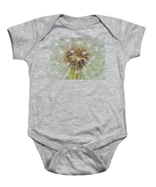 Dandelion Matrix Baby Onesie