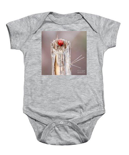 Fine Art- Ladybird Baby Onesie
