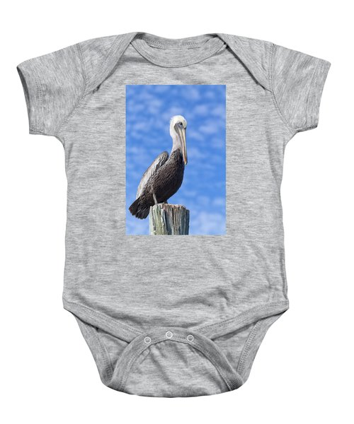 Florida Brown Pelican Baby Onesie