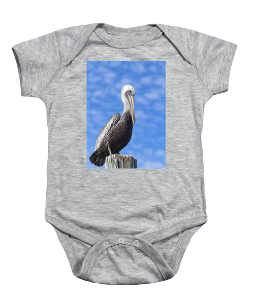 Florida Brown Pelican Baby Onesie