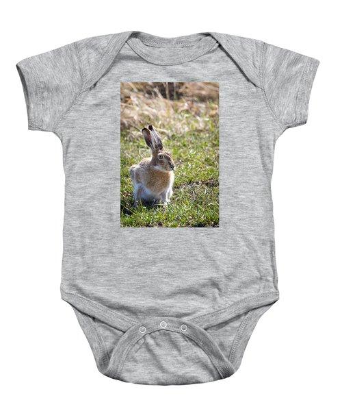 Jackrabbit Baby Onesie