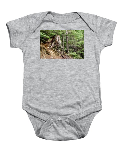 Just Hanging On Old Growth Forest Stump Baby Onesie
