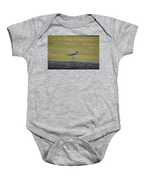 Killdeer Baby Onesie by James Petersen