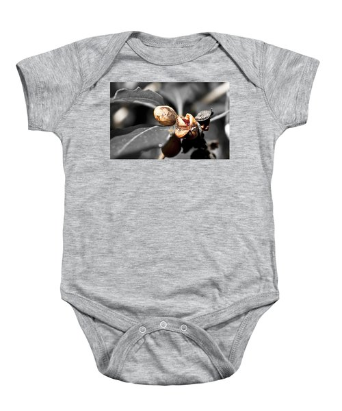 Baby Onesie featuring the photograph Knew Seeds Of Complentation by Miroslava Jurcik
