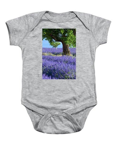 Lone Tree In Lavender Baby Onesie