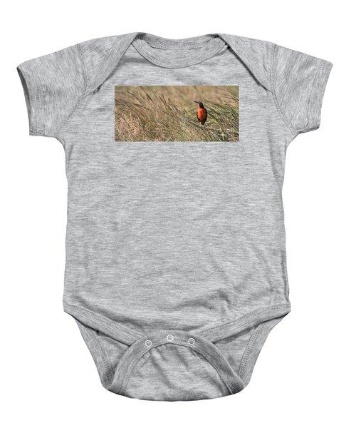 Long-tailed Meadowlark Baby Onesie