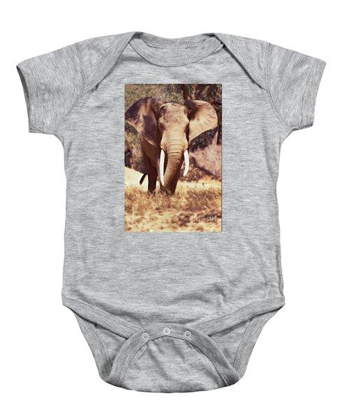 Mana Pools Elephant Baby Onesie