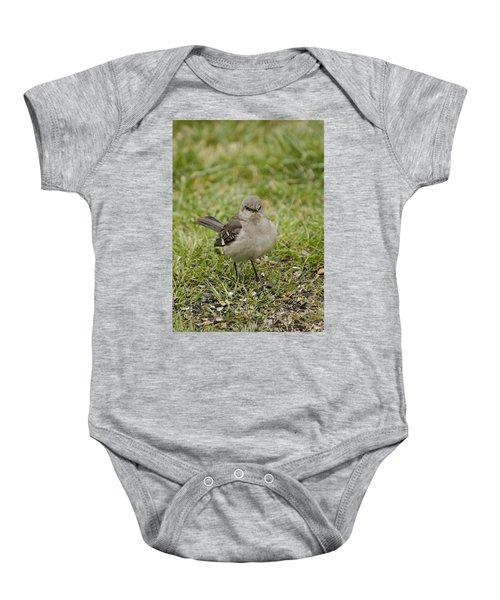 Northern Mockingbird Baby Onesie by Heather Applegate